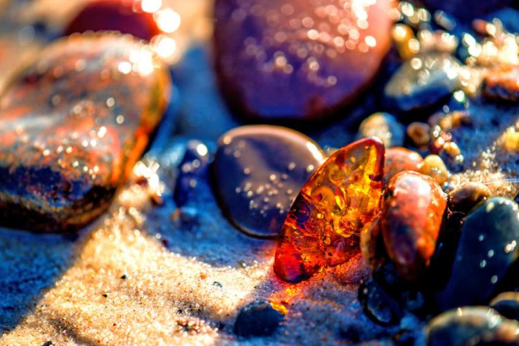 ​  Amber on the beach of the Baltic Sea  ​